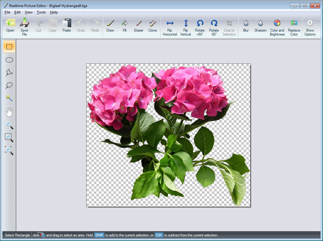 Realtime Picture Editor
